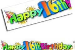 16th birthday paper banner